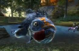 fish rift