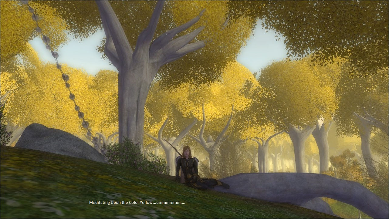 LOTRO | The Last Chapter Gaming Blog